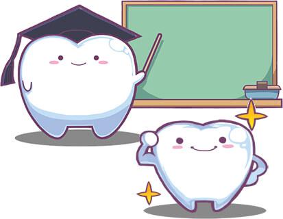 乳歯にも重要な役割がある 高槻の歯医者